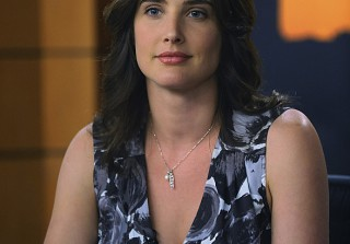 How I Met Your Mother: Who Almost Played Robin Instead of Cobie Smulders?