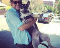 w630_Brant-Daugherty-With-His-Dog-Knuckles-1409099101