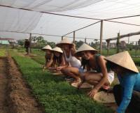 w630_vietnamese-girls-1391478039