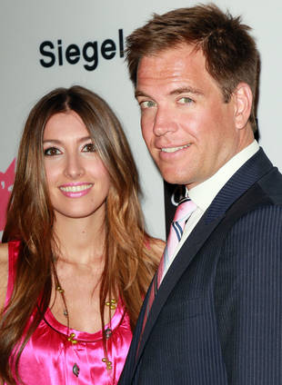 NCIS Star Michael Weatherly Is Going to Be a Dad Again!