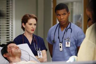 Grey's Anatomy Season 9 Spoilers: Sarah Drew Reveals Favorite Episodes