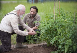 """The Walking Dead Season 4: Dave Alpert Reveals """"Not Everybody\'s Going to Make It"""" — Exclusive"""
