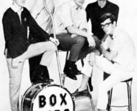 w310_Box Tops Band