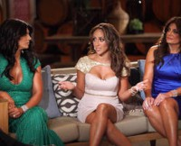 w310_The-Real-Housewives-of-New-Jersey-Season-4-Reunion-Melissa-Gorga-Is-Upset-With-Teresa-Giudice-2610239258388769571
