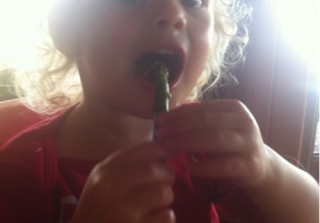 Adorable Pic of the Day! David Boreanaz\'s Daughter Is a Mini Emily Deschanel