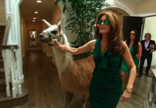 Real Housewives\' Lisa Vanderpump Brings A Very Special Guest to Portia Umansky\'s Party